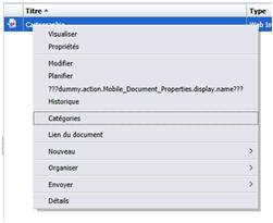 Enregistrer document SAP BI Mobile