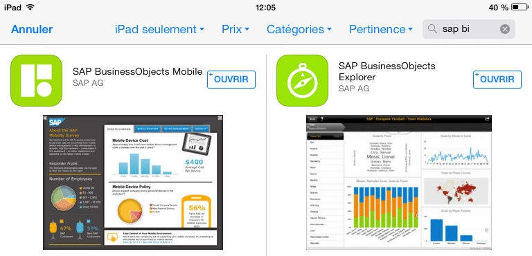 Application BI Mobile