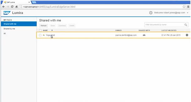 Lumira Server Interface