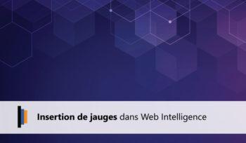Jauges Webintelligence