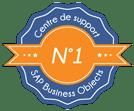 Leader support SAP