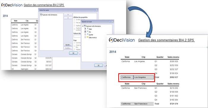 Rupture avec dimensions multiples en BI 4.2 SP5