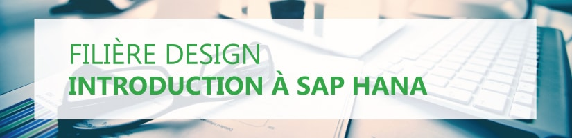 Formation Introduction SAP HANA HA100