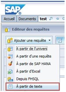 Fichier texte source avec la BI 4.2 SP6
