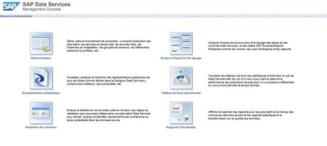 Console Management SAP Data Services