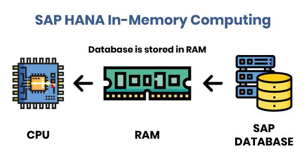 Base de données In Memory