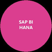 Expertise DeciVision SAP HANA