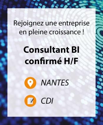 Consultant BI confirmé à Nantes