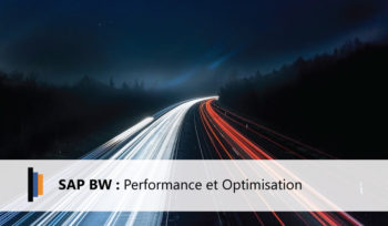 Performance et Optimisation SAP BW