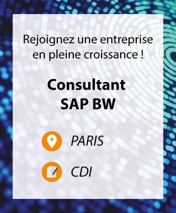 Consultant SAP BW