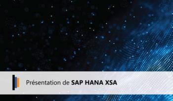 SAP HANA XSA