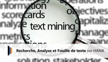 Text Mining sur SAP HANA
