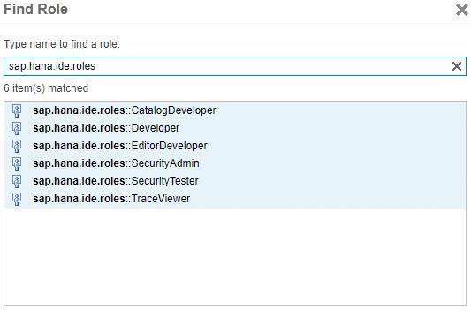 Roles spécifiques IDE