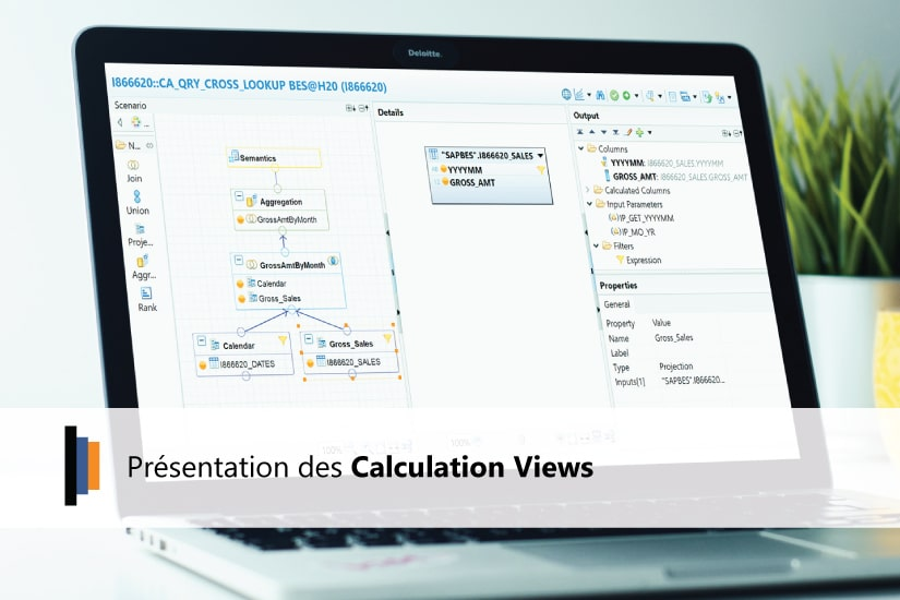 Présentation des Calculation Views