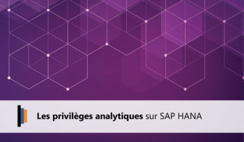 Privileges analytiques SAP HANA